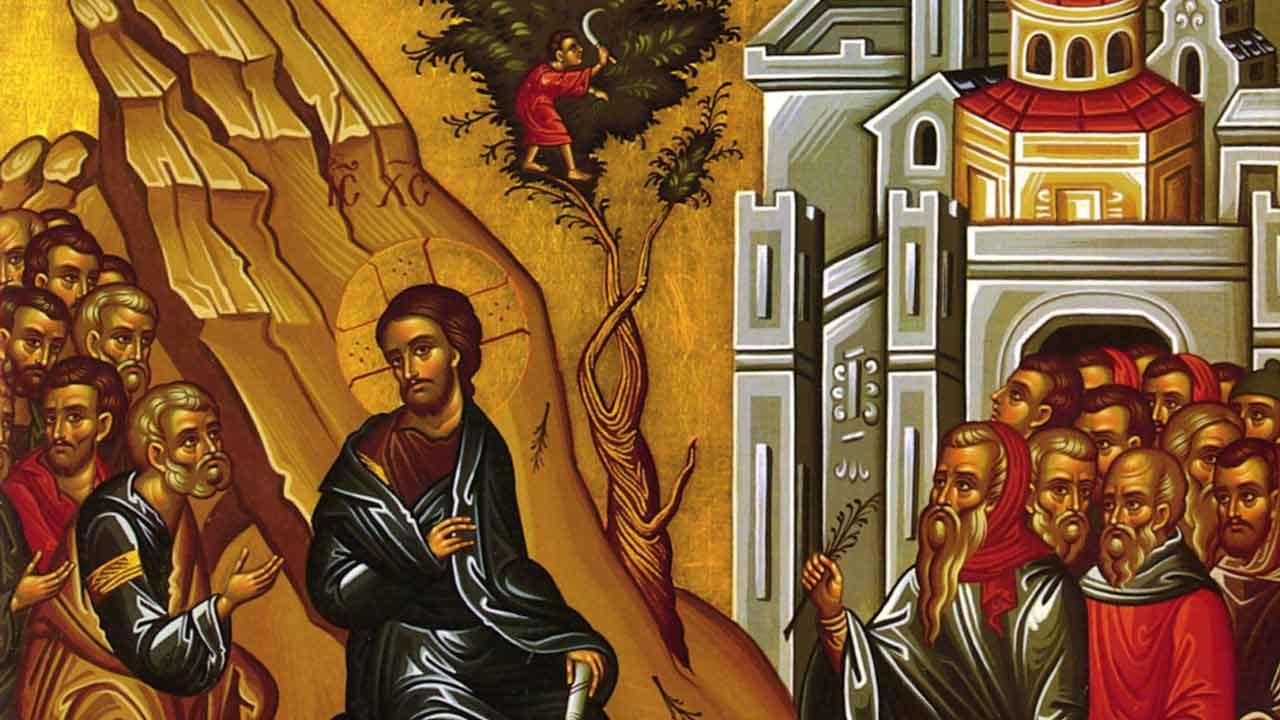 Κυριακή των Βαΐων - Η Βαϊοφόρος - Ευαγγέλιο Κυριακής - Λατρευτική Ζωή - Απαρχή - Θεολογία